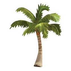 Paper House Productions - Mini Die Cut Piece - Palm Tree