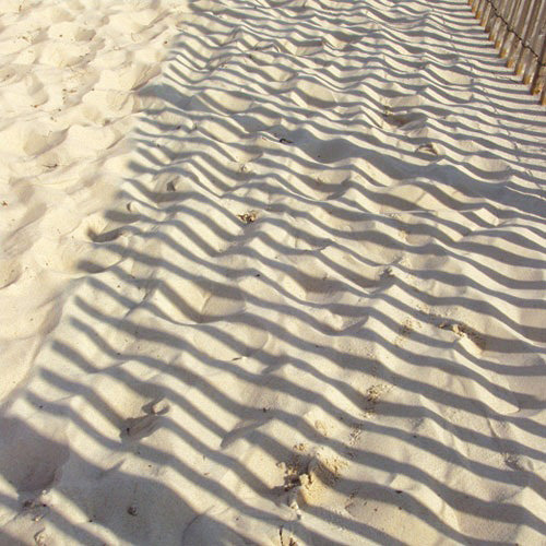 Paper House Productions - Beach Collection - 12 x 12 Paper - Rippled Sand