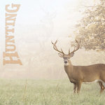 Paper House Productions - Hunting Collection - 12 x 12 Paper - Whitetail Deer