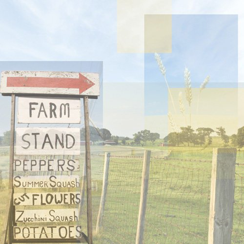 Paper House Productions - Farm Collection - 12 x 12 Paper - Farm Stand