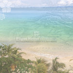 Paper House Productions - Caribbean Collection - 12 x 12 Paper - W. Caribbean