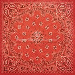 Paper House Productions - Country Star Collection - 12 x 12 Paper - Red Bandana