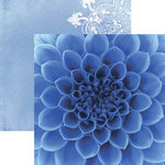 Paper House Productions - Color Ways Collection - Sapphire - 12 x 12 Double Sided Paper - Dahlia
