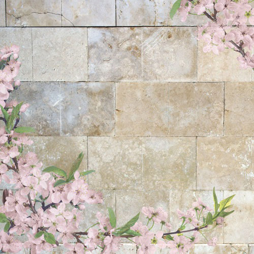 Paper House Productions - Washington DC Collection - 12 x 12 Paper with Glitter Accents - Cherry Blossoms