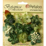 Petaloo - Botanica Collection - Floral Embellishments - Sugared Minis - Green
