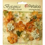 Petaloo - Botanica Collection - Floral Embellishments - Sugared Minis - Gold and Sienna