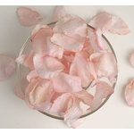 Petaloo - Botanica Collection - Floral Embellishments - Rose Petals - Pink