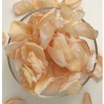Petaloo - Botanica Collection - Floral Embellishments - Rose Petals - Peach