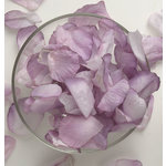 Petaloo - Botanica Collection - Floral Embellishments - Rose Petals - Lavender