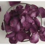 Petaloo - Botanica Collection - Floral Embellishments - Rose Petals - Purple
