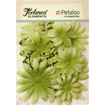 Petaloo - Burlap and Canvas Collection - Floral Embellishments - Daisy Flower Layers - Pistachio