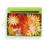 Petaloo - Tutti Fruitti Collection - Flowers - Daisy Box Blend - Large - Yellow and Orange
