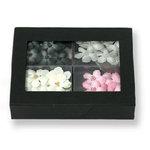 Petaloo - Pink Poodle Collection - Flowers - Florettes Box Blend - Pink Poodle