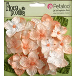 Petaloo - Flora Doodles Collection - Velvet Hydrangeas - Apricot