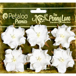 Petaloo - Penny Lane Collection - Floral Embellishments - Wild Roses - Mulberry Street - White