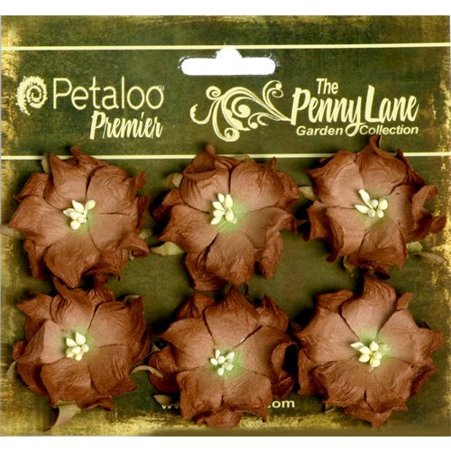 Petaloo - Penny Lane Collection - Floral Embellishments - Wild Roses - Mulberry Street - Dark Brown