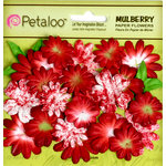 Petaloo - Flora Doodles Collection - Mulberry Flowers - Mini Daisies with Tyedye - Red
