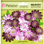 Petaloo - Flora Doodles Collection - Mulberry Flowers - Mini Daisies with Tyedye - Plum