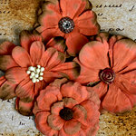 Petaloo - Darjeeling Collection - Floral Embellishments - Sienna