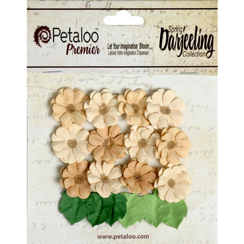 Petaloo - Darjeeling Collection - Floral Embellishments - Mini Daisies with Leaves - Shabby Beige
