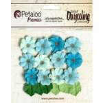 Petaloo - Darjeeling Collection - Floral Embellishments - Mini Daisies with Leaves - Seaside