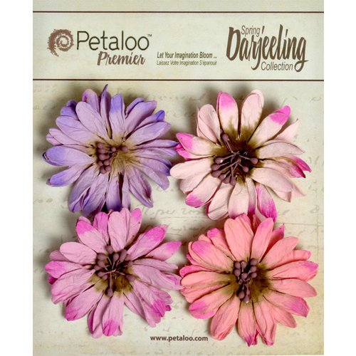 Petaloo - Darjeeling Collection - Floral Embellishments - Daisies - Hyacinth
