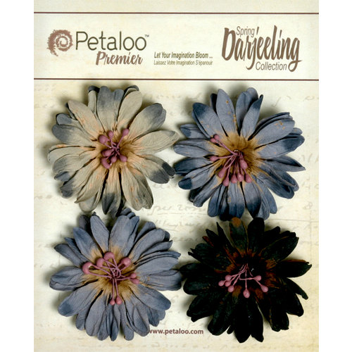 Petaloo - Darjeeling Collection - Floral Embellishments - Daisies - Grey and Black