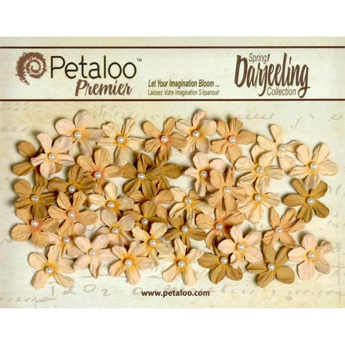 Petaloo - Darjeeling Collection - Floral Embellishments - Mini Pearl Daisies - Shabby Beige