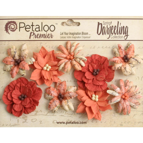 Petaloo - Printed Darjeeling Collection - Floral Embellishments - Wild Blossoms - Medium - Paprika