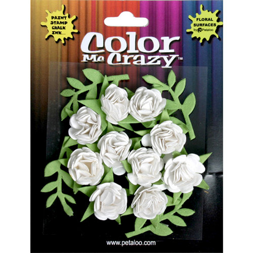 Petaloo - Color Me Crazy Collection - Petite Mini Roses