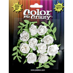 Petaloo - Color Me Crazy Collection - Petite Mini Roses