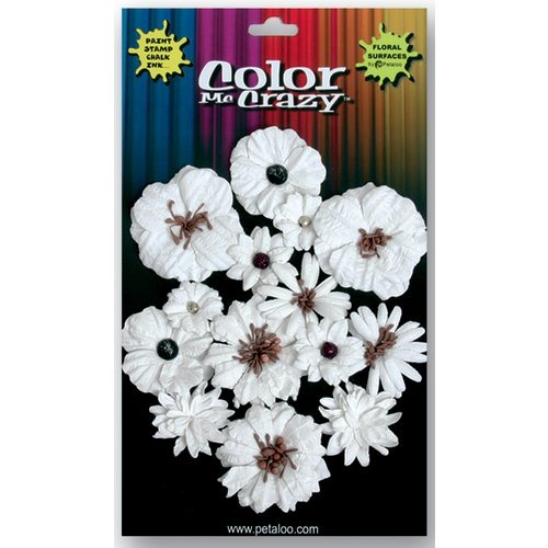 Petaloo - Color Me Crazy Collection - Mixed Darjeeling Flowers