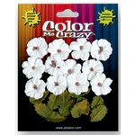 Petaloo - Color Me Crazy Collection - Darjeeling Flowers - Petites