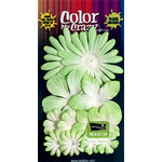 Petaloo - Color Me Crazy Collection - Core Matched Mulberry Paper Flowers - Apple Green