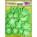 Petaloo - Color Me Crazy Collection - Core Matched Mulberry Paper Flowers - Lime