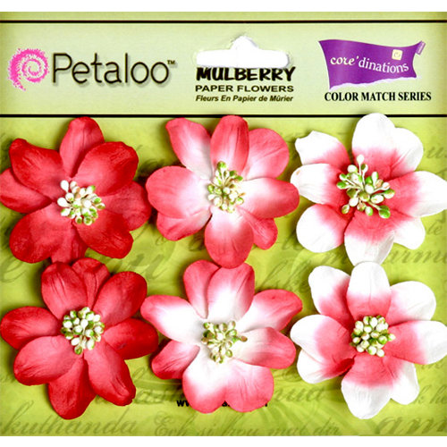 Petaloo - Flora Doodles Collection - Mulberry Flowers - Camelia - Cardinal Red