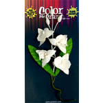 Petaloo - Color Me Crazy Collection - Orchid Spray - Phalaenopsis