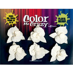 Petaloo - Color Me Crazy Collection - Orchids - Medium - Dendrobiums