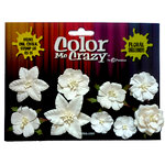 Petaloo - Color Me Crazy Collection - Mini Canterbury Flowers