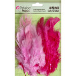 Petaloo - Expressions Collection - Feathers - Pink and Fuschia