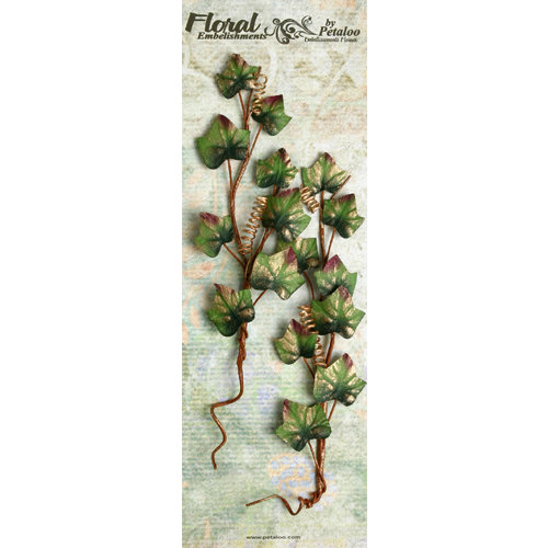 Petaloo - Canterbury Collection - Ivy Leaf Vines