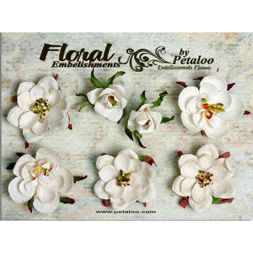 Petaloo - Canterbury Collection - Magnolia Blossoms - White
