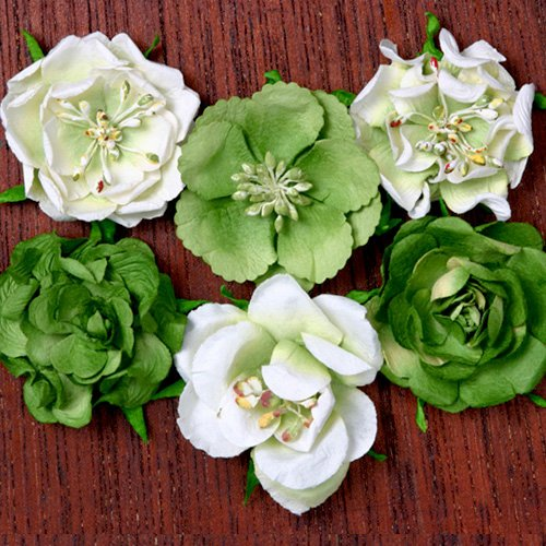 Petaloo - Canterbury Collection - Roses - Lime