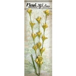 Petaloo - Canterbury Collection - Honeysuckle Vine - Yellow