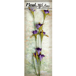 Petaloo - Canterbury Collection - Flowering Vine Spray - Violet