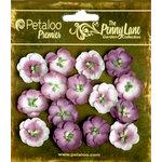 Petaloo - Penny Lane Collection - Floral Embellishments - Forget Me Nots - Plum