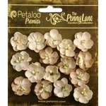 Petaloo - Penny Lane Collection - Floral Embellishments - Forget Me Nots - Antique Beige