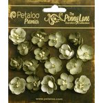 Petaloo - Penny Lane Collection - Floral Embellishments - Forget Me Nots - Antique Green