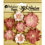 Petaloo - Penny Lane Collection - Floral Embellishments - Mini Wild Roses - Antique Rose
