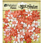 Petaloo - Penny Lane Collection - Floral Embellishments - Mini Daisy Petites - Antique Peach